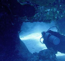 ScubaFit® Diver Instructors Directory