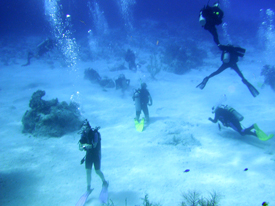 Scuba Dive Instructors Course