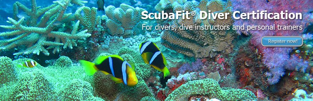 slide_diver_course