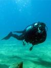 Become a ScubaFit Dive Instructor at the Long Beach SCUBA Show